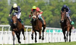 horse racing games