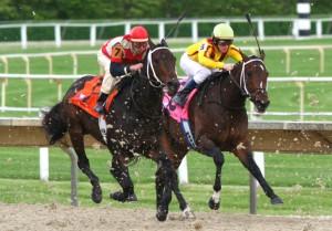 Racebook Gambling