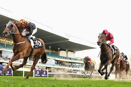 Online horse racing gambling eye on gambling gallery