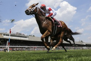 Horse Betting - Win, Place, and Show Wagers