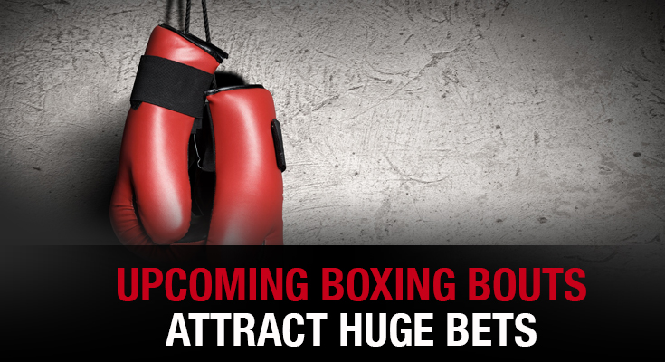 Upcoming Boxing Bouts Attract Huge Bets
